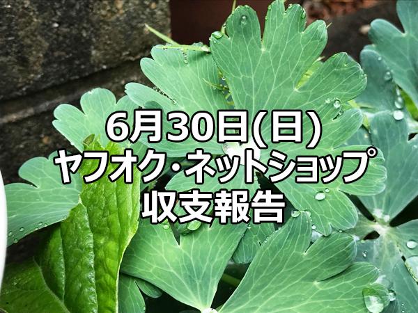 6月30日(日)収支報告